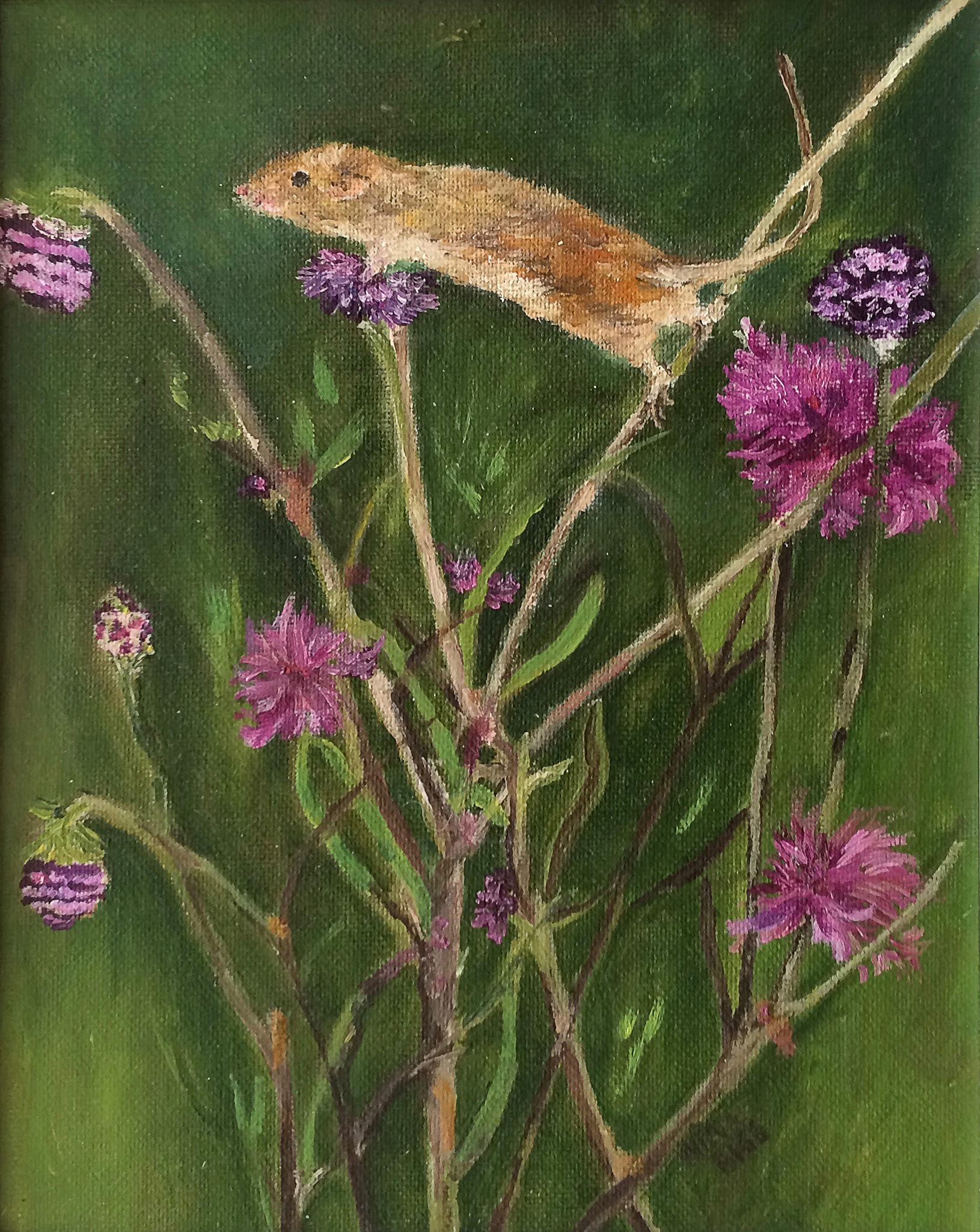 Harvest Mouse by Nina Bigg