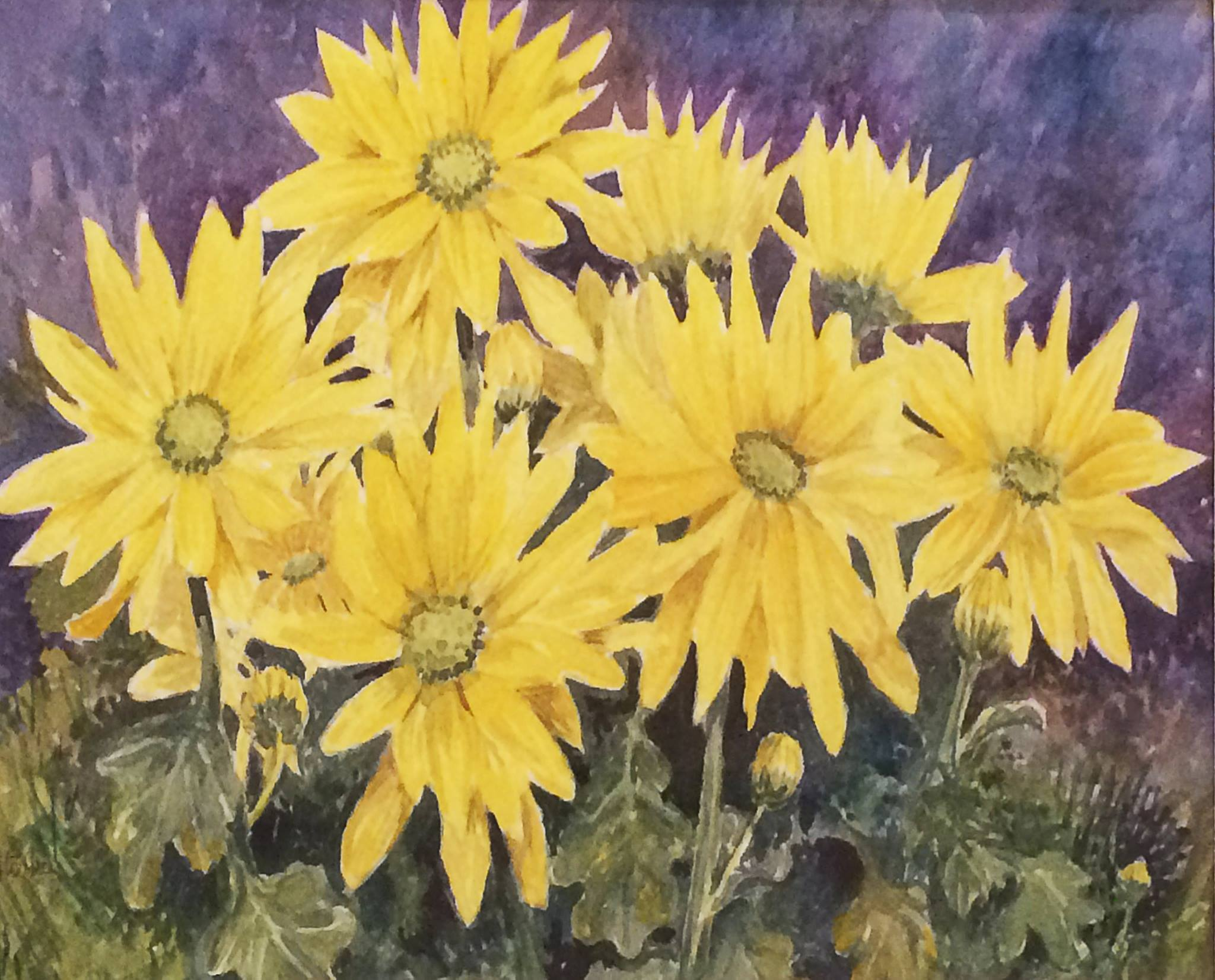 Yellow Chrysanths by Joan Storkey