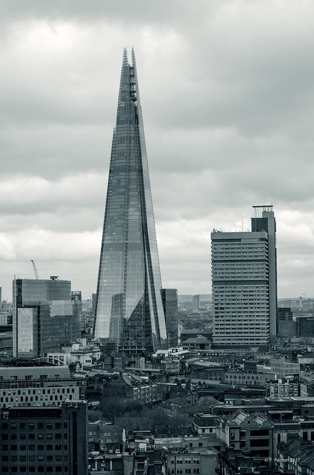 The Shard by Frazer Fenton