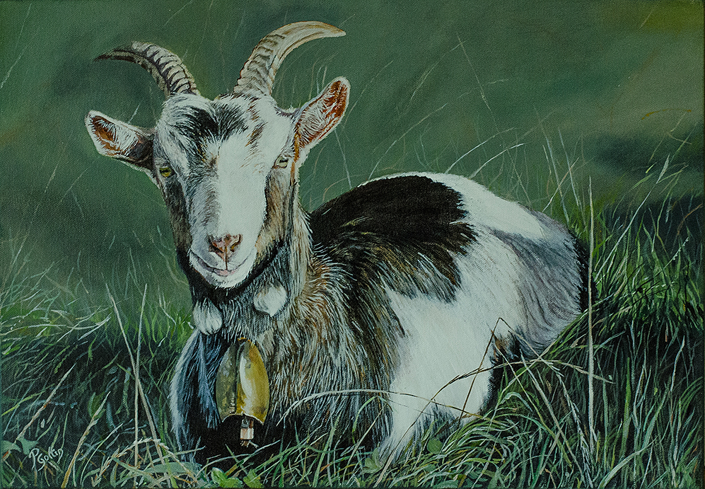 You got my goat by Peter Goffin