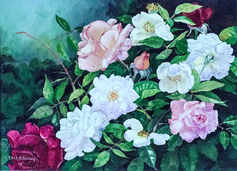 Roses, by Anne Whitlock (Dixon)