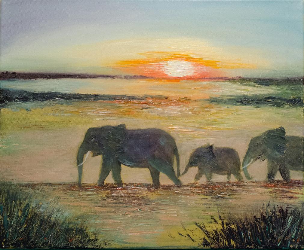 African Safari by Shaz