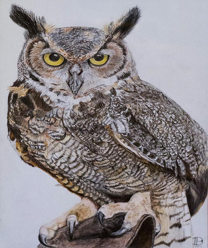 Great Horned Owl, by Denise Buck